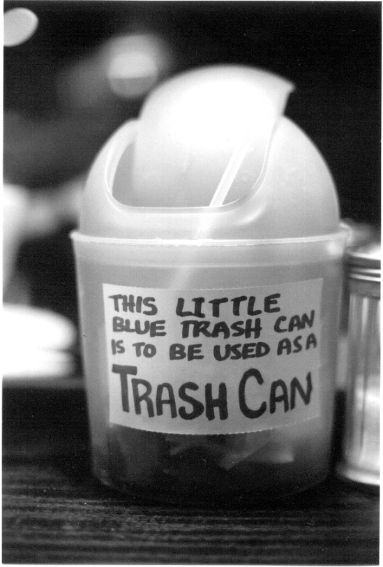 little blue trash can (2003)